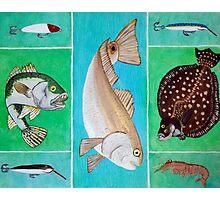 Great Fish Trio Photographic Print