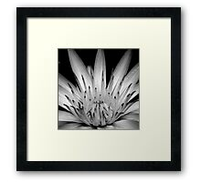 What You Think You Become. Framed Print