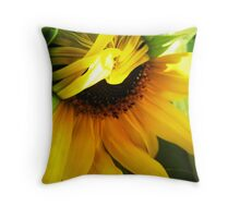 Comb-over Throw Pillow