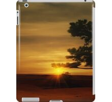 Desert Hawk iPad Case/Skin