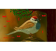CHIRPING SPARROW Photographic Print