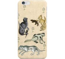 Medieval Cats iPhone Case/Skin