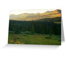 Gore Mountains from Shrine Ridge Greeting Card