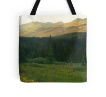 Gore Mountains from Shrine Ridge Tote Bag