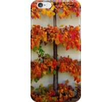 Colours of Autumn - Tamed iPhone Case/Skin