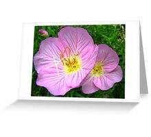 Two in the Pink Greeting Card