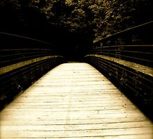 The Longest Road by featheredge