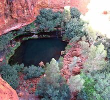 Pilbara - Dales Gorge - Karijini National park by Caroline Scott