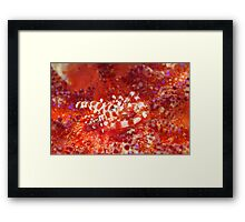 Baptism Of Fire Framed Print