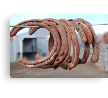 Rusting horse shoes. Canvas Print
