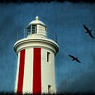 Heading for the lighthouse... by Mary Trebilco