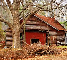 This  Old Shed by madman4