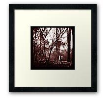Fae Whispers ii Framed Print