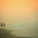 National Seashore, Cape Cod by fauselr