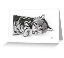 Sleepy Beauty Greeting Card
