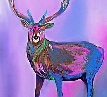 Deer Rainbow by Saundra Myles