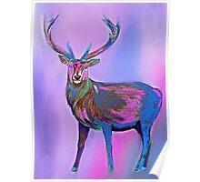 Deer Rainbow Poster