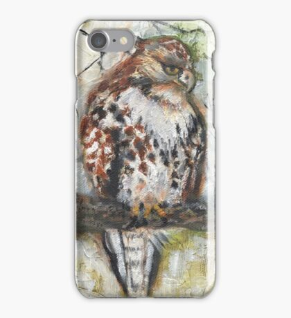 Young Red-tailed Hawk, Perched iPhone Case/Skin