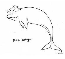 Brick Beluga Photographic Print