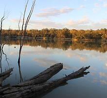 River Murrey mornings by gasbo