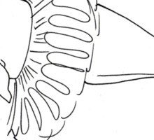 Ballet Beluga Sticker