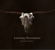 Learning Discernment by Abeque  Wikimac