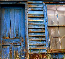 Americana Blue by Sue  Cullumber