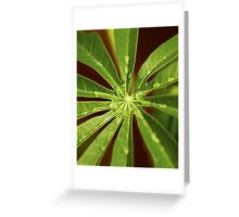 Centre of the Green Leaf Greeting Card