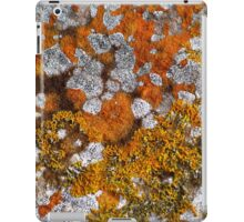 African Plains iPad Case/Skin