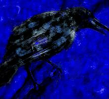 Crow at the dawn by Arletta