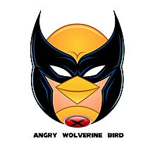 Angry Wolverine Bird Photographic Print
