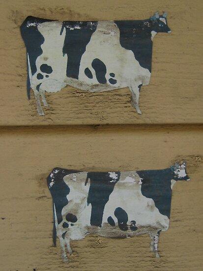 Blue Ridge paintflake cows in summer by Laurkat