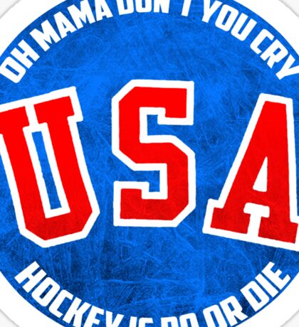 USA Hockey Sticker