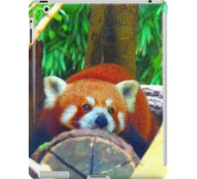 Panda iPad Case/Skin