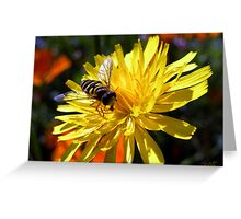 Flower with Wasp Greeting Card