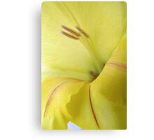 Very Yellow Canvas Print