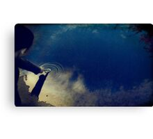 Not So Out of Reach Canvas Print