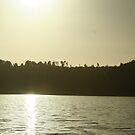 Swan Lake by Kathryn Steel