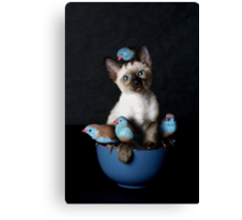 Bird Puss Canvas Print