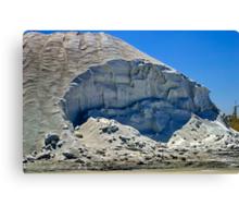 """The Salt of the Earth"" Canvas Print"