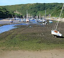 Boats at Solva Harbour by DRWilliams