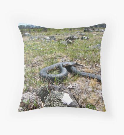 Tasmanian Copperhead Snake Throw Pillow