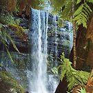 Waterfalls - Tasmania by gaylene