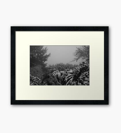 from my back deck Framed Print