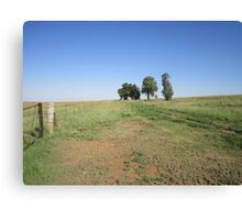 Trees and fence Canvas Print