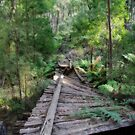 Bridge is out!! Marysville track by JenniferW
