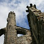 Ruins of Catherdral, St. Andrews Scotland by weallareone