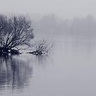 Sounds of Silence by Varinia   - Globalphotos