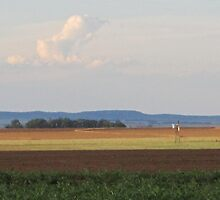 Windpump on horizon by MariaSG