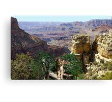 967-Cougar Canyon Vista Canvas Print